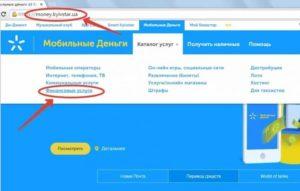Как обменять visa на вебмани деньги