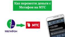 Что делать если положил деньги не на тот номер МТС, Мегафон или Билайн