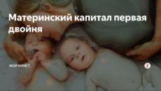Дают ли материнский капитал за двойню при первых родах